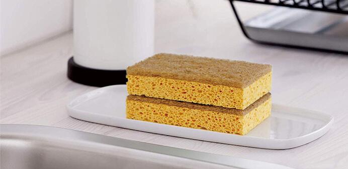 sponge_pic02